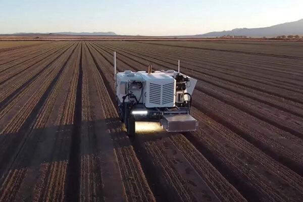 ربات کشاورز با لیزر علفهای هرز را جدا می نماید